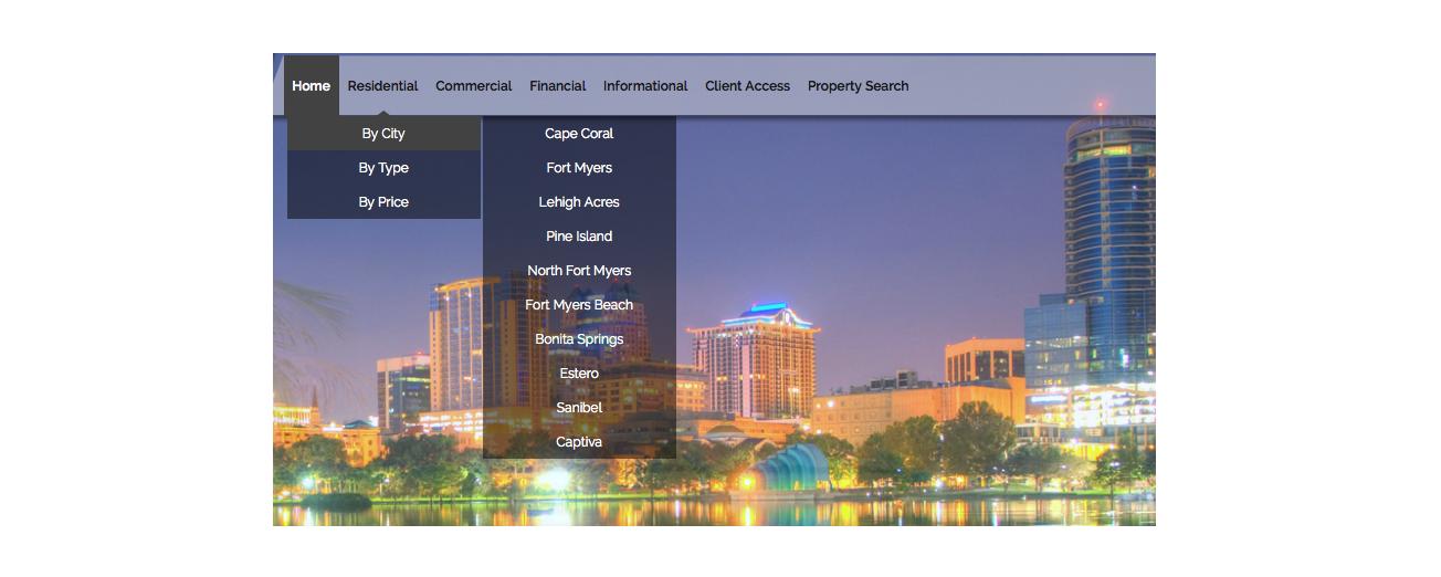 Idx broker demo site